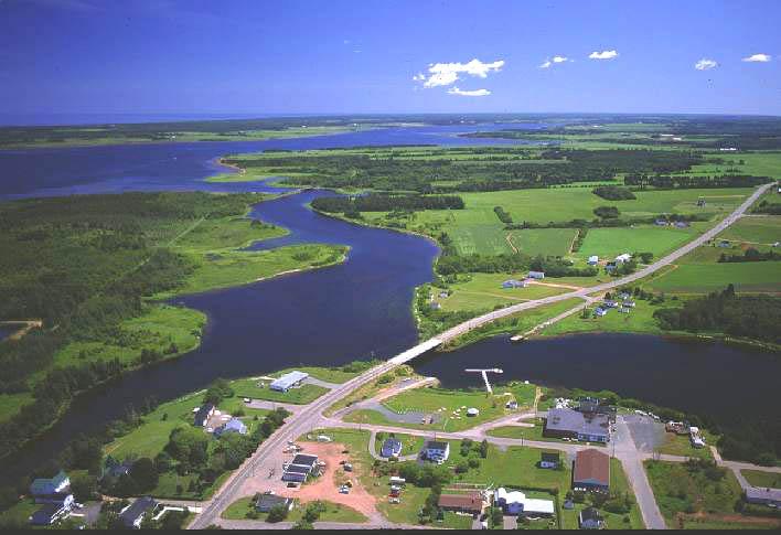 prince edward island preserve company case study