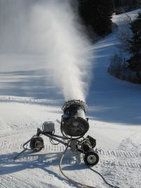 Brookvale Provincial Ski Park Snowgun