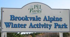 Brookvale Alpine Winter Activity Park