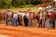 Crapaud Exhibition Horses