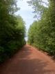 Stanhope Lane